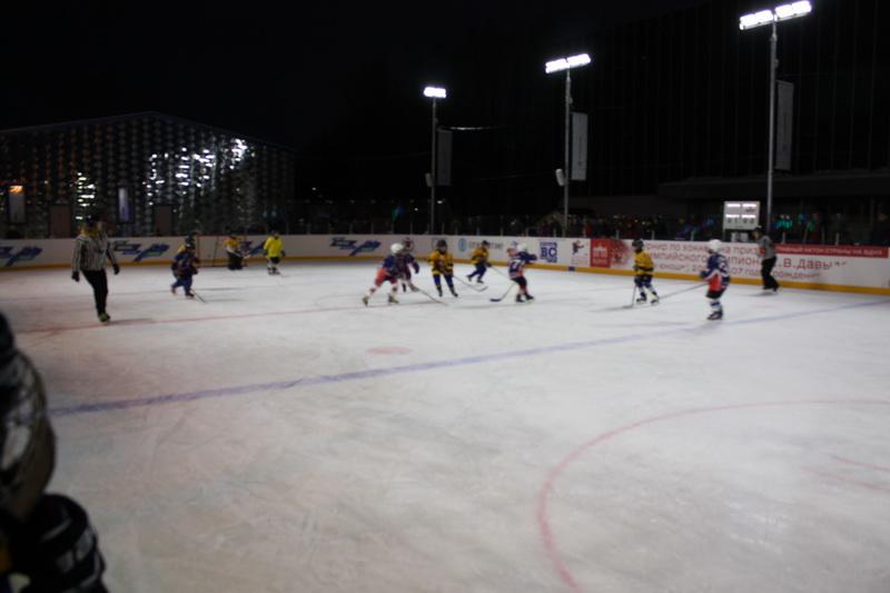 хоккейный матч 1