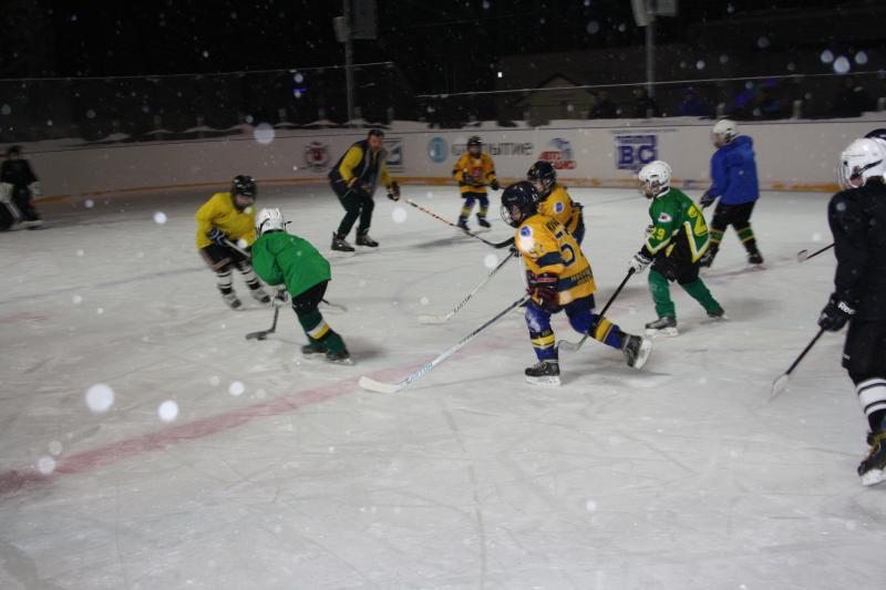 хоккейный матч 3